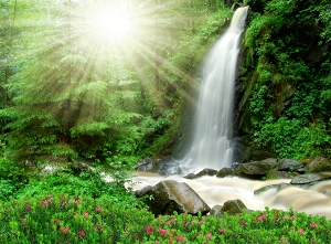 bigstock_beautiful_waterfall_in_the_Nat_22759001