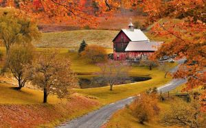 CaptureOldBarnAutumn